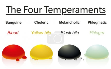 Four temperaments with corresponding humors or bod...