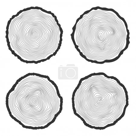 Set of four vector tree rings background and saw cut tree trunk