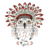portrait of owl in war bonnet