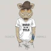 Boar in t-shirt with quote