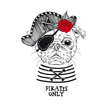 Illustration pour Illustration de pirate carlin avec rose sur fond blanc - image libre de droit