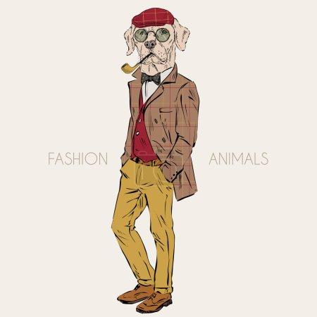 labrador dressed up in retro style