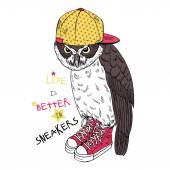 Owl dressed up in sneakers and cap