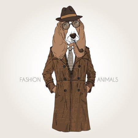 hound dog dressed up