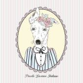 Cute portrait of Italian Greyhound girl in vintage style hand drawn graphic animal illustration