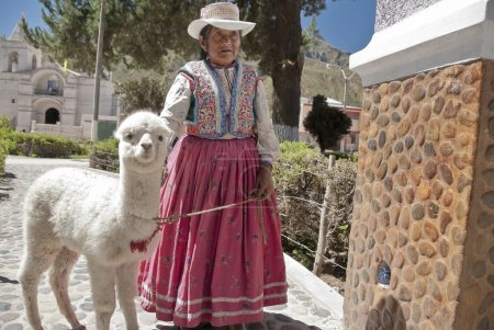 Quechua woman walks along a street with her alpaca...