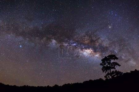 Panorama silhouette of Tree with cloud and Milky Way. Long expos