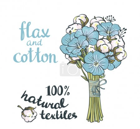 Illustration for Hand drawn flax and cotton. Vector design isolated on white background - Royalty Free Image