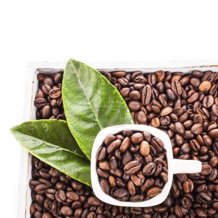 tasse avec grains de café torréfiés