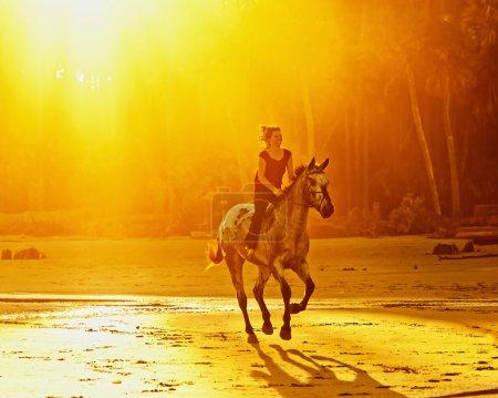 Photo pour Femme équitation galop cheval sur la plage au coucher du soleil - image libre de droit