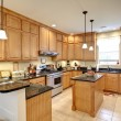 Beautiful upscale kitchen with maple cabinets...