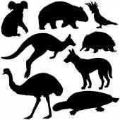 Vector set of australian animals silhouettes on white background