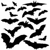 Vector Set of Bats Silhouettes on white background