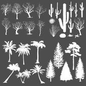 Vector Big Set of Trees and Plants Silhouettes Cacti Tumbleweed Pine Tree Palm Tree Bare Tree