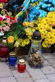 Lampy a květiny