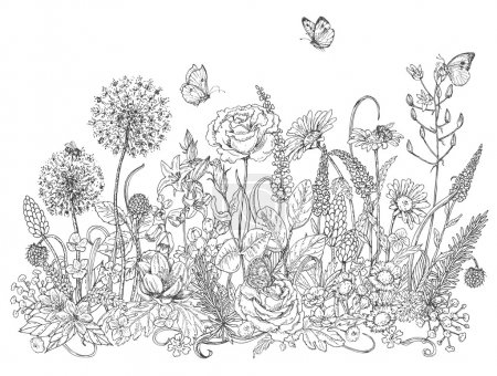 Illustration for Hand drawn line illustration with wildflowers and insects. Black and white doodle wild flowers, bees and butterflies for coloring. Floral elements for decoration. Vector sketch. - Royalty Free Image