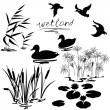 Set of silhouettes of water plants and ducks....