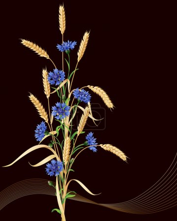 Cornflowers and ears of wheat bunch on black