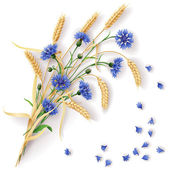 Bunch of wheat ears and blue cornflowers with scattered petals