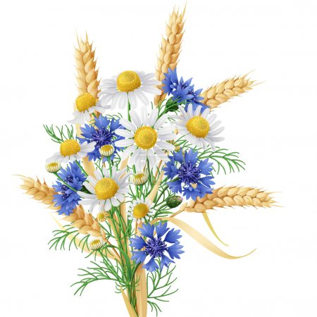 Illustration for Bunch of  wild chamomile, blue cornflowers and wheat ears. - Royalty Free Image