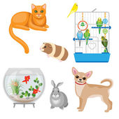 Set of pets and other animal companions Cat dog rabbit guinea pig budgies in the cage and aquarium with fishes  isolated on white