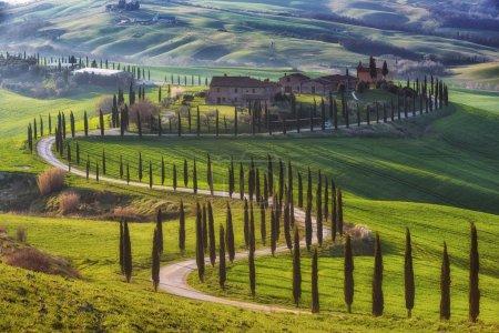 Champs de voyage magique de la Toscane