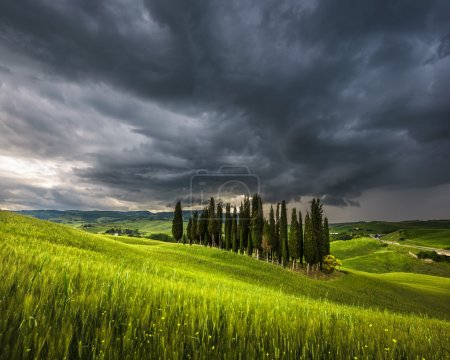 Spring storm weather with sunset over the cypress trees in Tusca