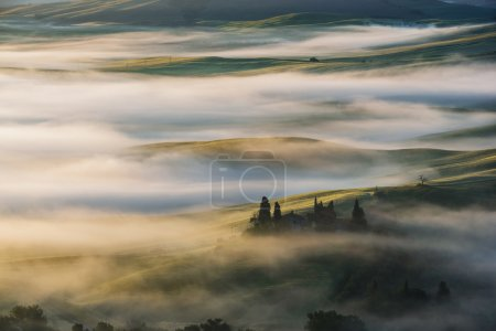 Fantastic landscape in the mists of light painted. Spring landsc