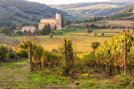 Monastery Sant'Antimo in the vineyards of Brunello, near Montalc