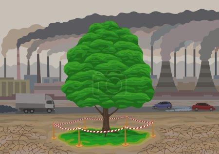 The last tree.