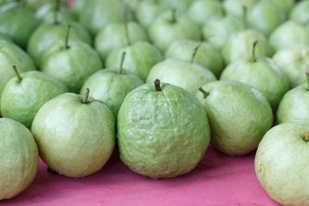 Photo for Guava fruit fresh on red stall at the market - Royalty Free Image