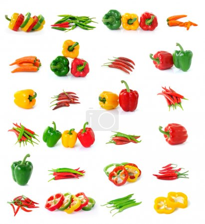 chili, pepper collection isolated on white background