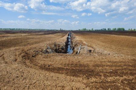 Photo pour Champ d'extraction de gazon. Le système de restauration. Technologie agricole . - image libre de droit