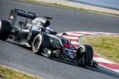 FERNANDO ALONSO (McLAREN HONDA) - F1 TESTING