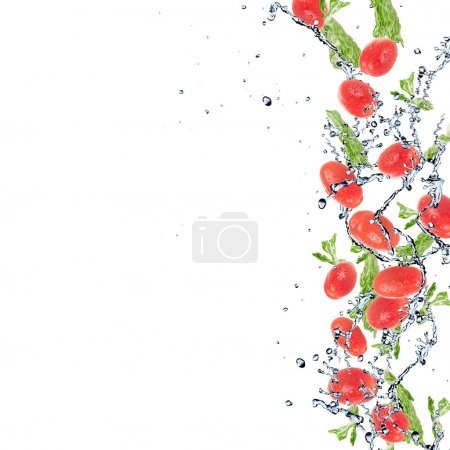 Photo for Salad with tomatoes isolated on white background and Splashing water - Royalty Free Image