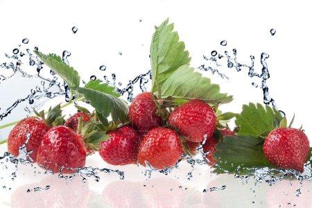 Strawberry and Splashing water