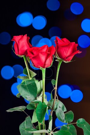 Photo pour Rose rouge sur fond naturel - image libre de droit