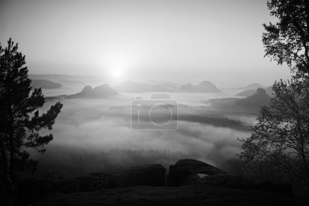 View into deep misty valley in Saxon Switzerland. Sandstone peaks increased from foggy background. Black and White picture.
