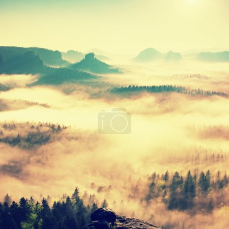 Fairy daybreak. Misty awakening in a beautiful hills. Peaks of hills are sticking out from foggy background