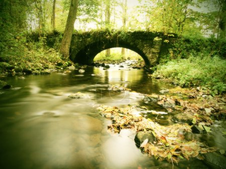 Photo for Old stony bridge above autumn river. Water of stream full of colorful leaves, leaves on gravel, blue blurred water. - Royalty Free Image