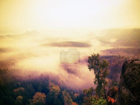 Red daybreak. Misty daybreak in a beautiful hills. Peaks of hills are sticking out from foggy background.