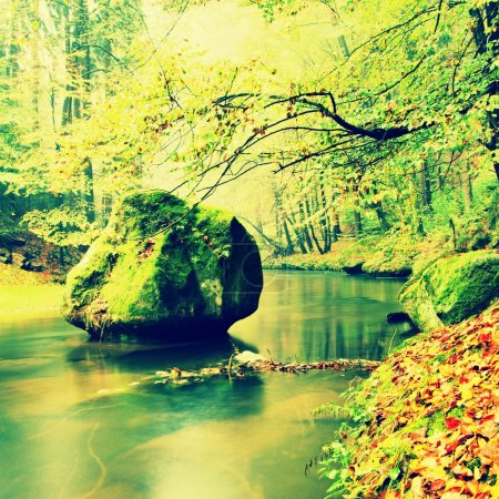 View into autumn mountain river with blurred waves,, fresh green mossy stones and boulders on river bank covered with colorful leaves from old trees.