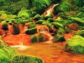 Cascades in rapide di acqua minerale. Sedimenti ferrici rossi su grandi massi coperti di muschio tra felci