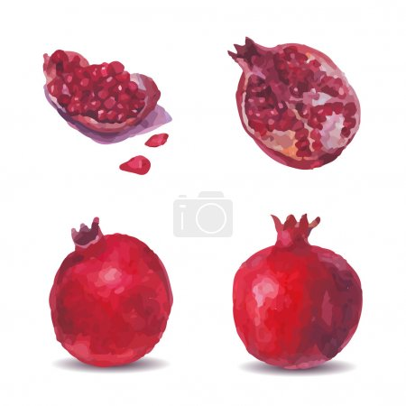 Picture a pomegranate, half and quartered and grain on a white background.