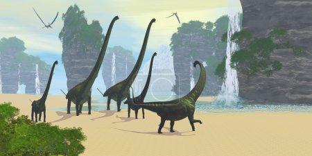 A Mamenchisaurus dinosaur herd