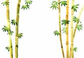 watercolor bamboo background