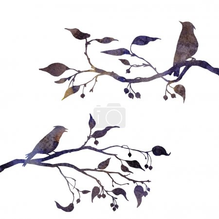 Photo for Silhouettes of birds at tree drawing in watercolor, hand drawn waxwings at branches of wild apple tree, hand drawn illustration - Royalty Free Image
