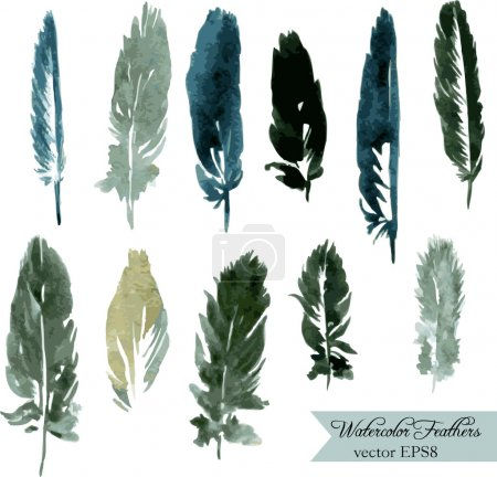Illustration for Set of plumes, watercolor drawing feathers, hand drawn vector illustration - Royalty Free Image