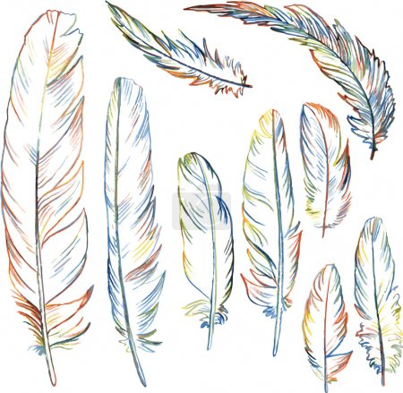 Illustration for Set of multicolor plumes, isolated pencil drawing feathers, creative decoration design elements, hand drawn vector illustration - Royalty Free Image