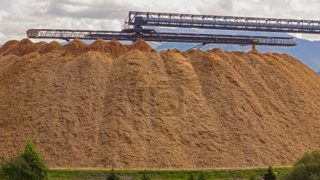 Large wood chip processing facility